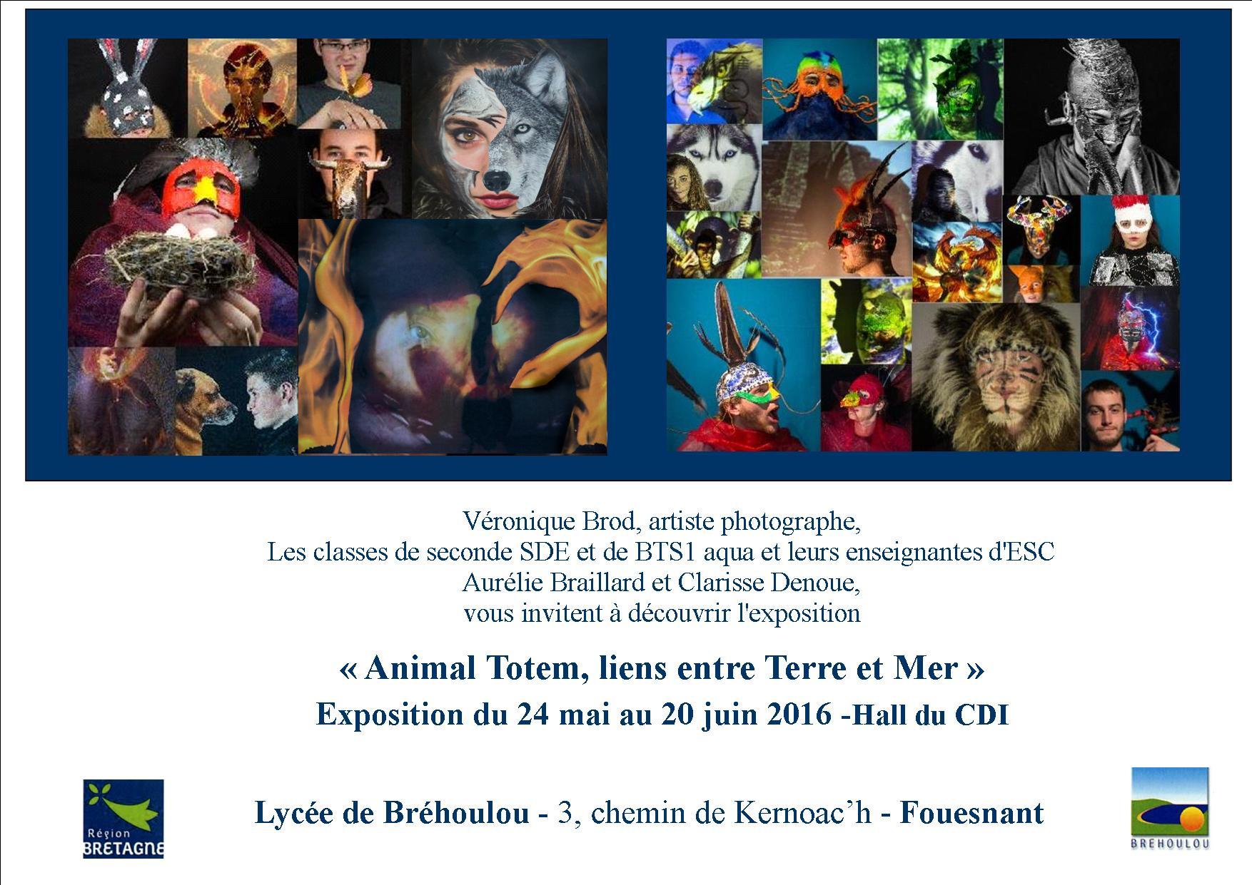 Exposition de Photographies, Lycée de Bréhoulou -Fouesnant